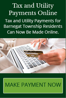 Tax and Utility Payments Online